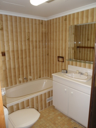 Francis Rd Artarmon - Bathroom Renovation - Before 1.JPG