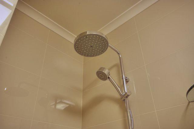 bath Shower Rose.jpg